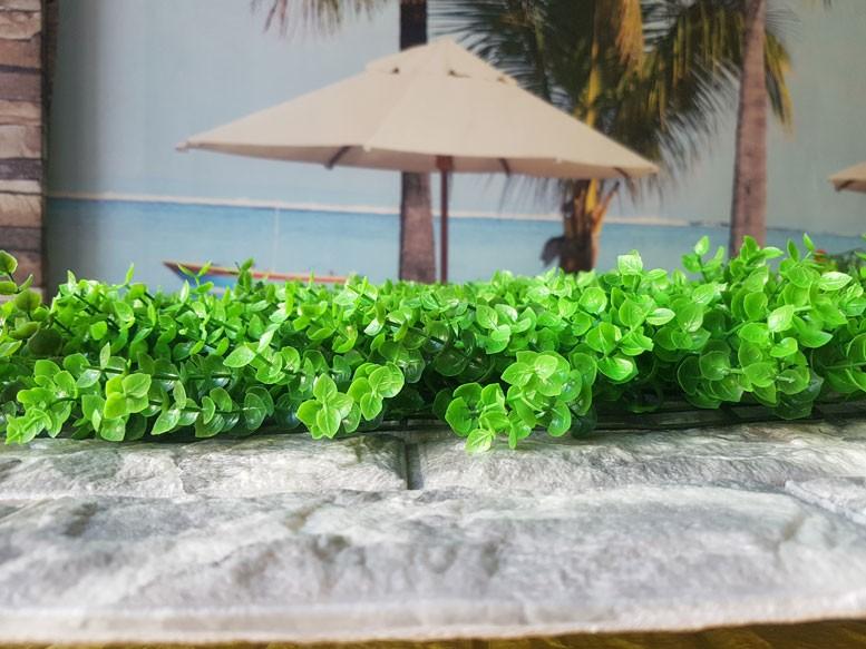 Tại sao nên chọn cỏ nhựa trang trí tường?(1)