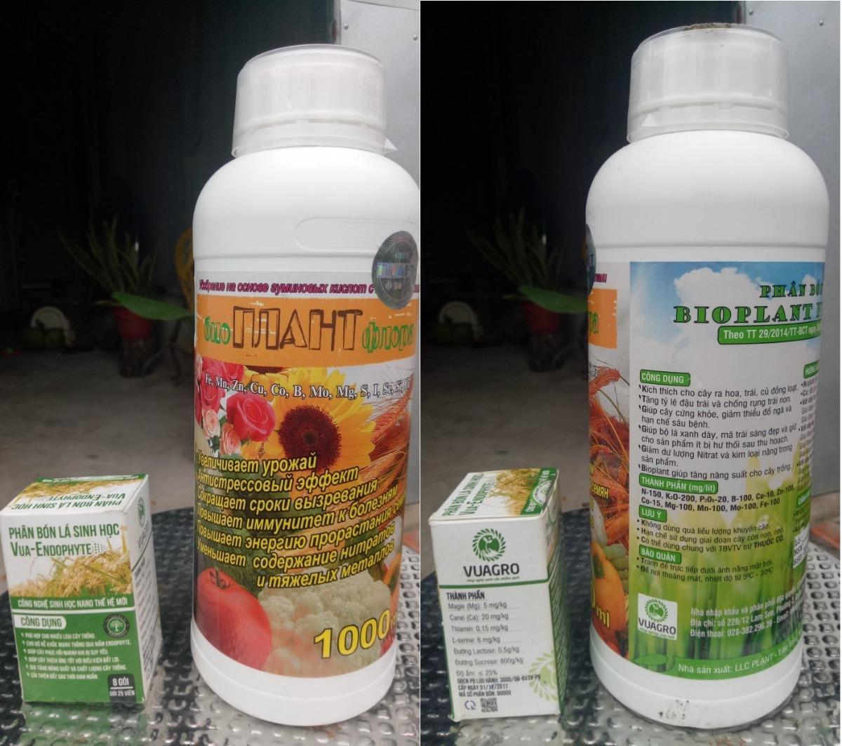Lý do chọn mua phân bón lá sinh học Vua - Endophyte