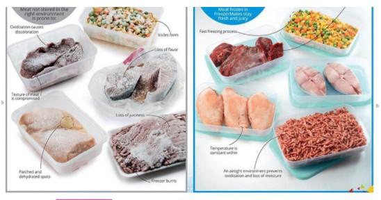So sánh việc sử dụng hộp bảo quản thịt cá Tupperware trong ngăn đông tủ lạnh FreezerMates với các loại hộp khác