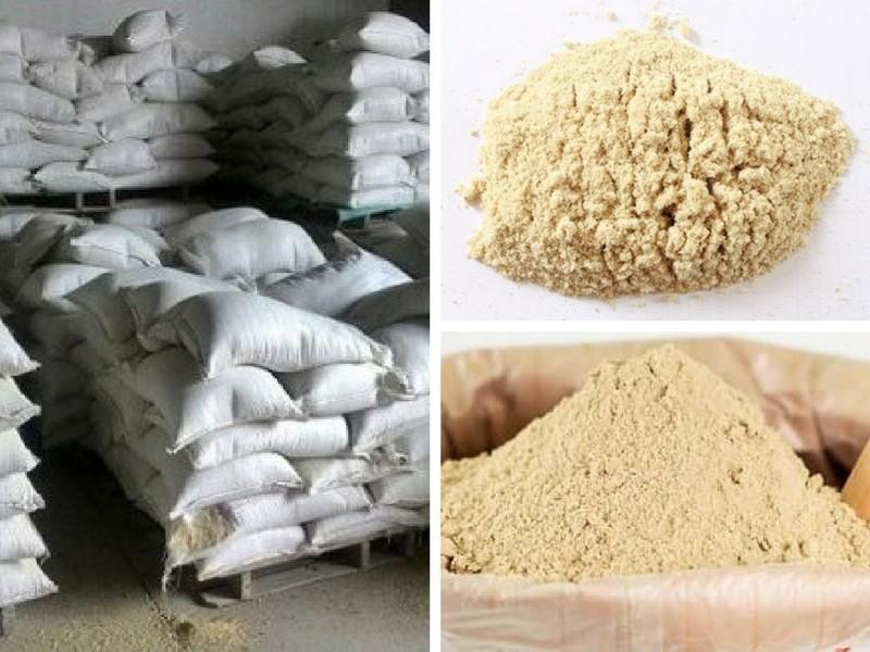 Cám gạo - Giải pháp dinh dưỡng trong chăn nuôi