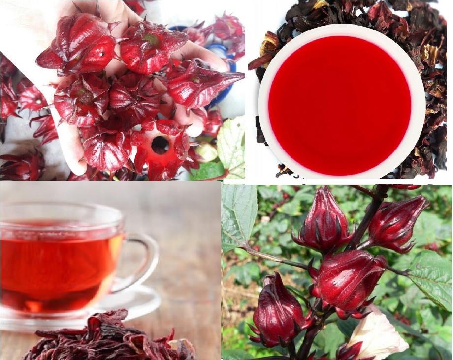 Cách pha trà Atiso đỏ khô(1)