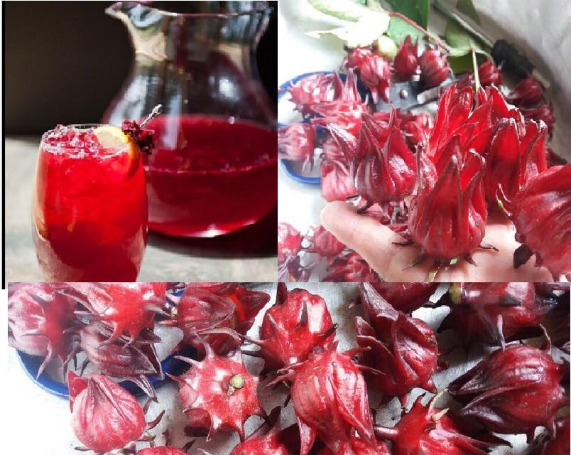 Cách pha trà Atiso đỏ khô(3)