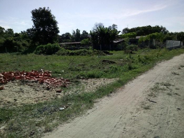 Tình hình giá đất Củ Chi: đang trong cơn sốt