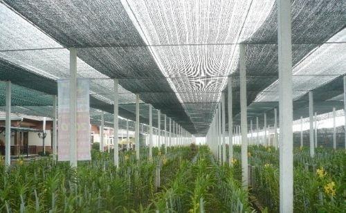Cung cấp lưới che nắng Thái Lan chất lượng, uy tín