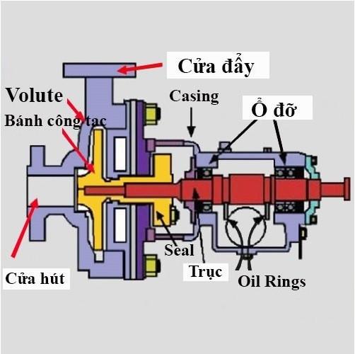 Cấu tạo, nguyên lý hoạt động và công dụng máy bơm ly tâm trục ngang