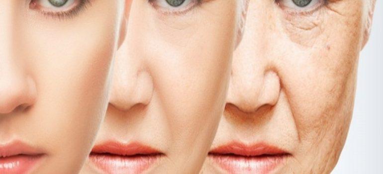 Da đẹp không tuổi đừng bỏ qua bài viết này? Cách bổ sung colagen và elastine giúp trẻ hóa da