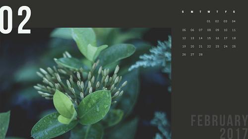 Mẫu lịch để bàn hiện đại - tháng 2