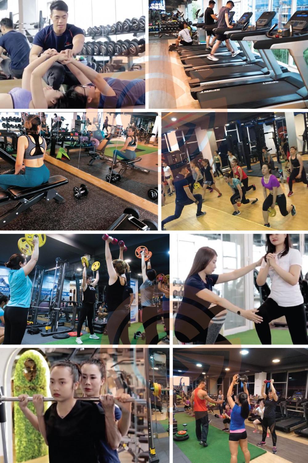 Studio Gym với hơn 200 thiết bị cao cấp từ Châu Âu
