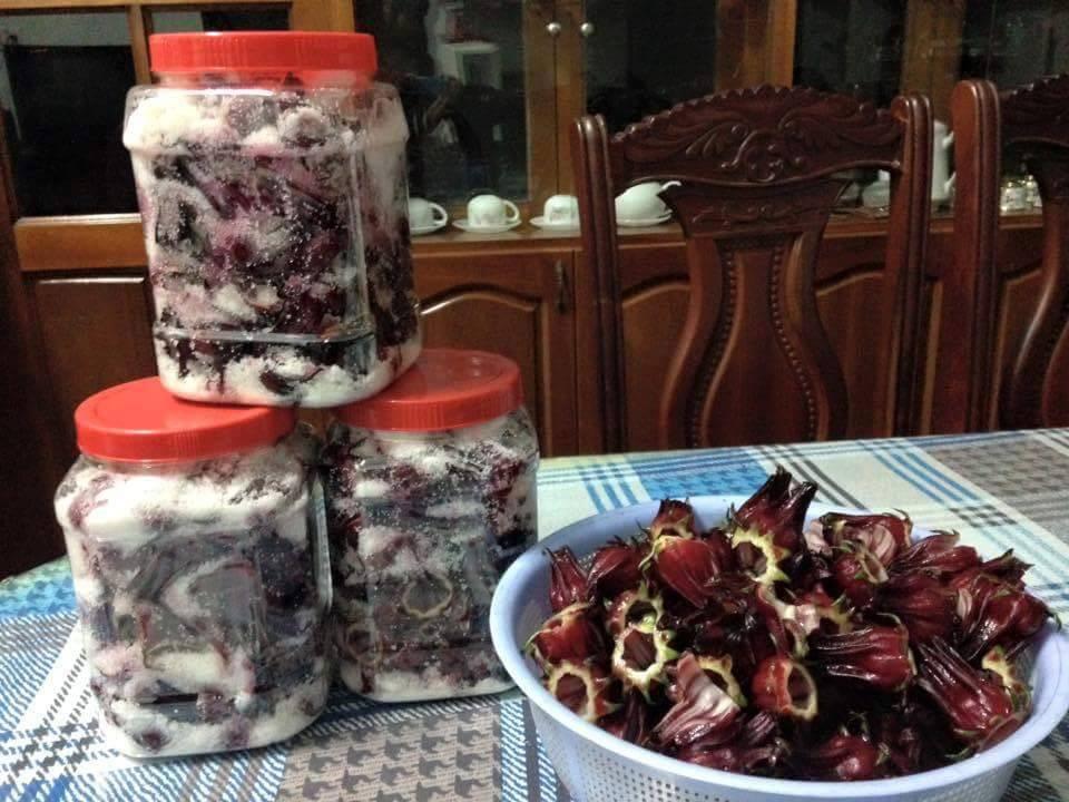 Hướng dẫn cách ngâm hoa atiso đỏ làm nước uống(1)