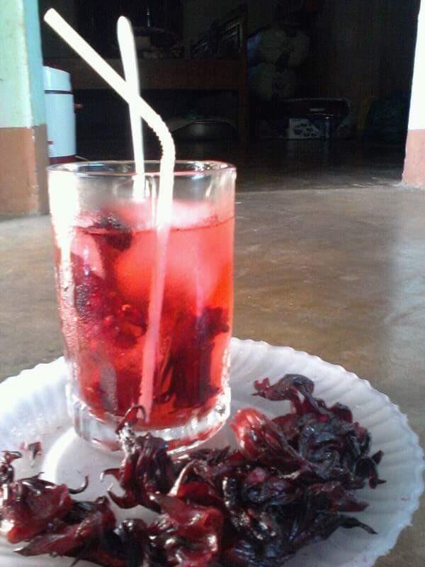 Hướng dẫn cách ngâm hoa atiso đỏ làm nước uống(3)