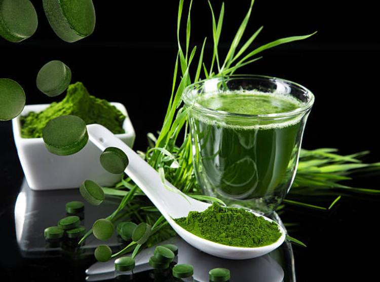Chăm sóc sức khỏe mỗi ngày với viên tảo xoắn Spirulina 500(1)