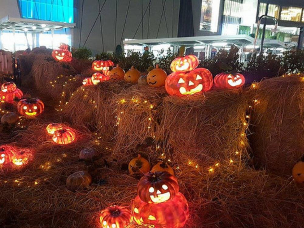 Dịch vụ trang trí Halloween giá rẻ TPHCM - Trang trí Halloween rùng rợn, đơn giản, dễ thương, kinh dị - theo chủ đề tùy chọn
