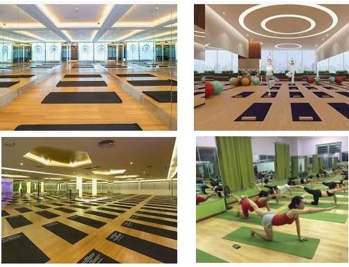 3 yếu tố giúp bạn quản lý phòng tập Yoga hiệu quả hơn