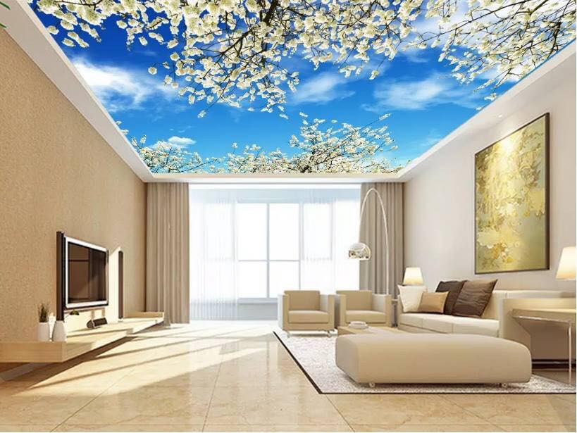 Trần xuyên sáng là gì? có nên sử dụng trần xuyên sáng không?
