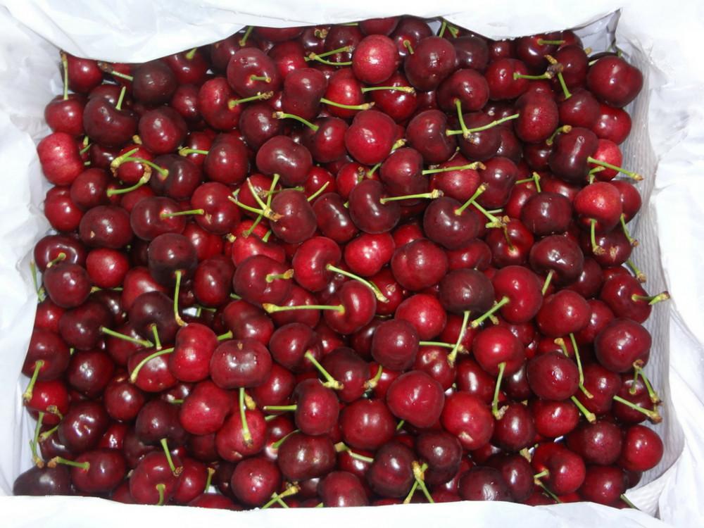 Quả Cherry có tác dụng gì?