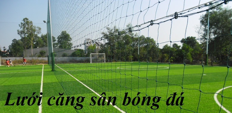 Cung cấp lưới bóng đá 700/21 chất lượng tốt, giá rẻ