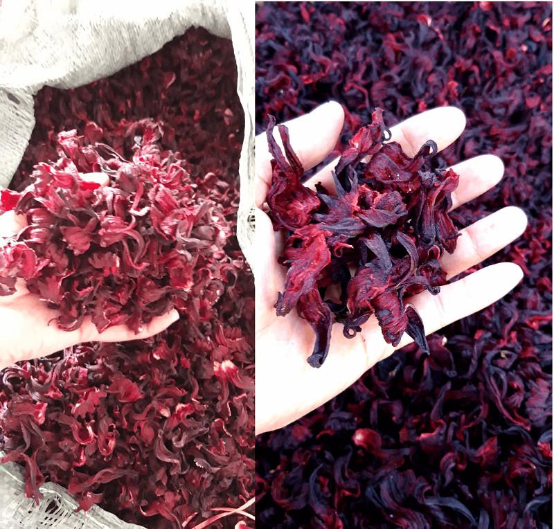 Tác dụng của hoa atisô khô