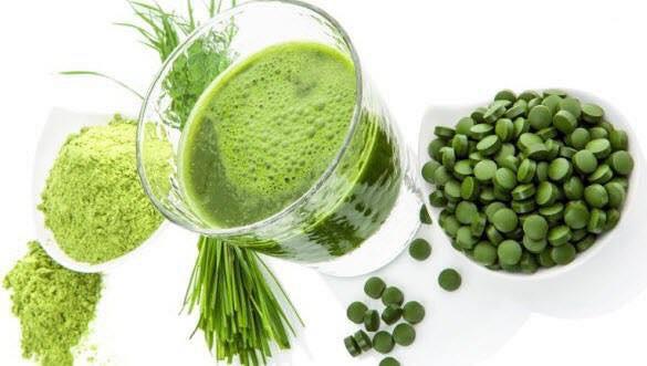 Phụ nữ mang thai có nên uống Tảo Spirulina không ?