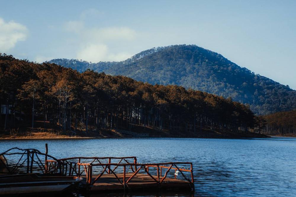Cầu gỗ hồ Tuyền Lâm-den-da-lat-ma-khong-tham-quan-ho-tuyen-lam-thi-dung-la-uong-phi uyenkhangvilla dalat
