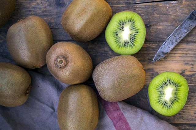 Giống cây Kiwi