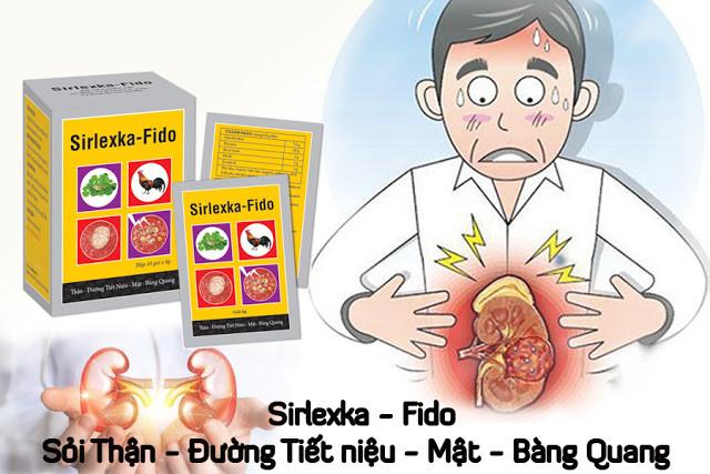 Thực phẩm phòng ngừa và hỗ trợ điều trị các bệnh lý sỏi thận - Sirlexka - Fido