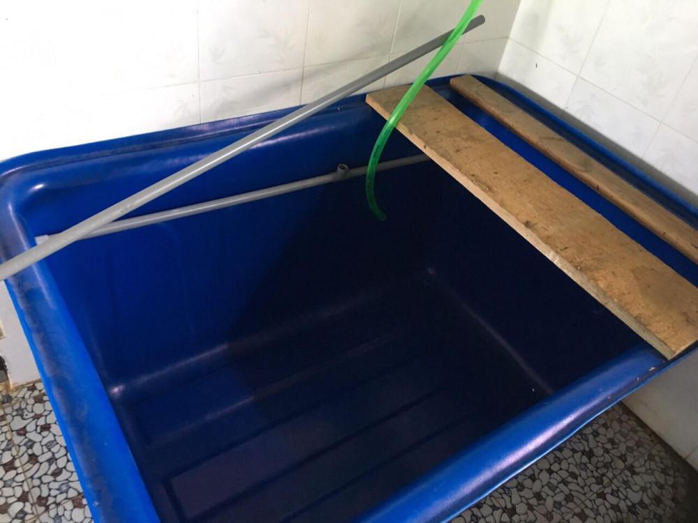 Thùng nhựa dung tích lớn tiện ích cho mô hình nuôi cá sạch ngày nay