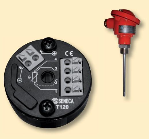 Hình bộ chuyển đổi T120 gắn trực tiếp trên cảm biến PT100 dạng củ hành.