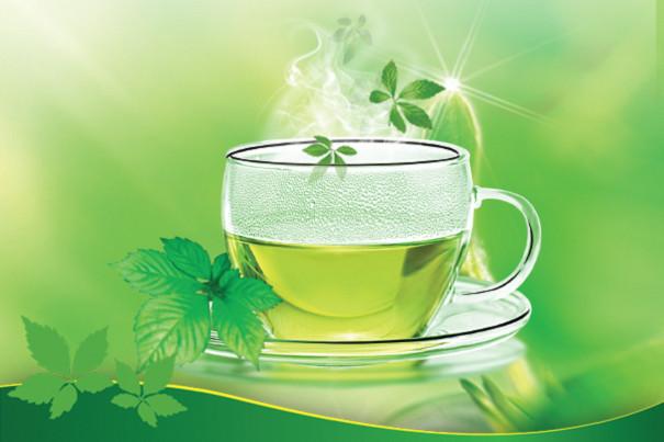 Tìm hiểu trà giảo cổ lam 5 lá Cao Bằng(1)