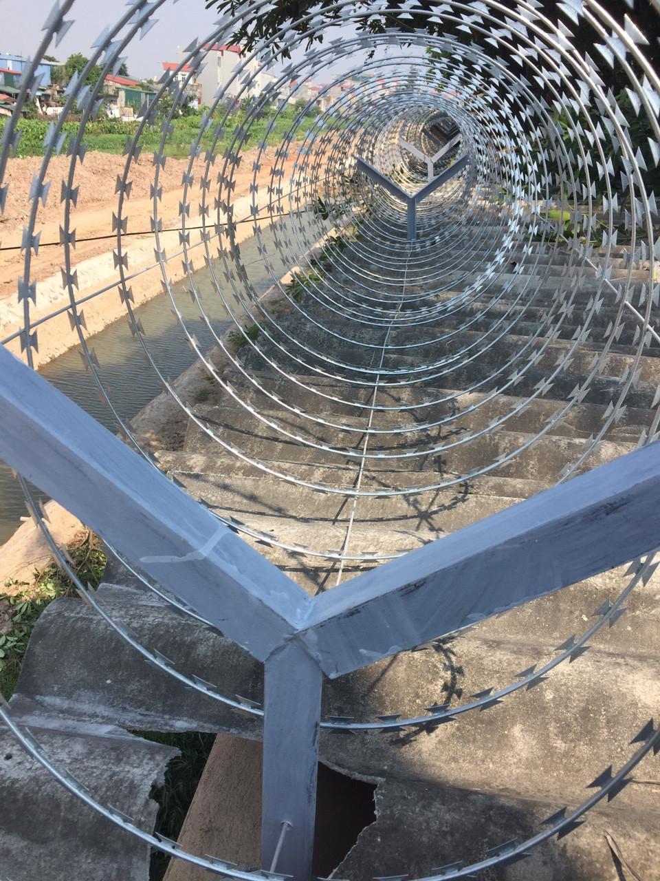 Thi công hàng rào Dây thép gai hình dao