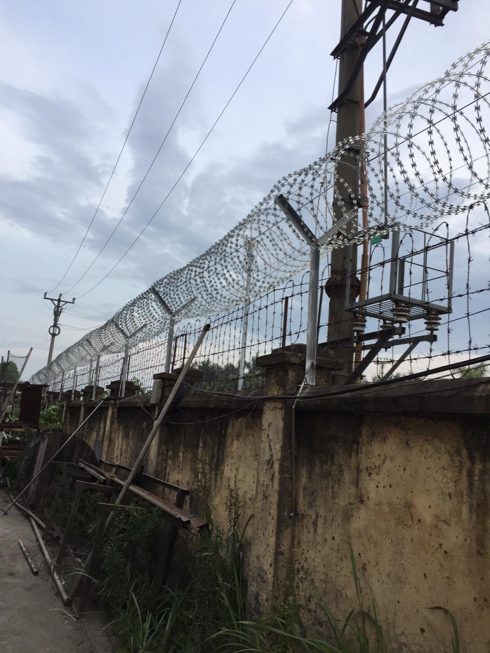 Thi công hàng rào Dây thép gai hình dao(3)