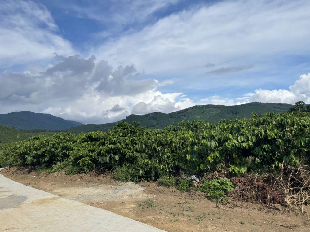 Bán đất Di Linh Miss Happy Land Nhà đầu tư bất động nhà đất Di Linh Lâm Đồng