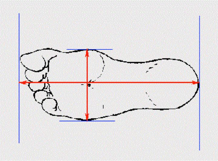 Cách đo chiều dài, chiều rộng bàn chân