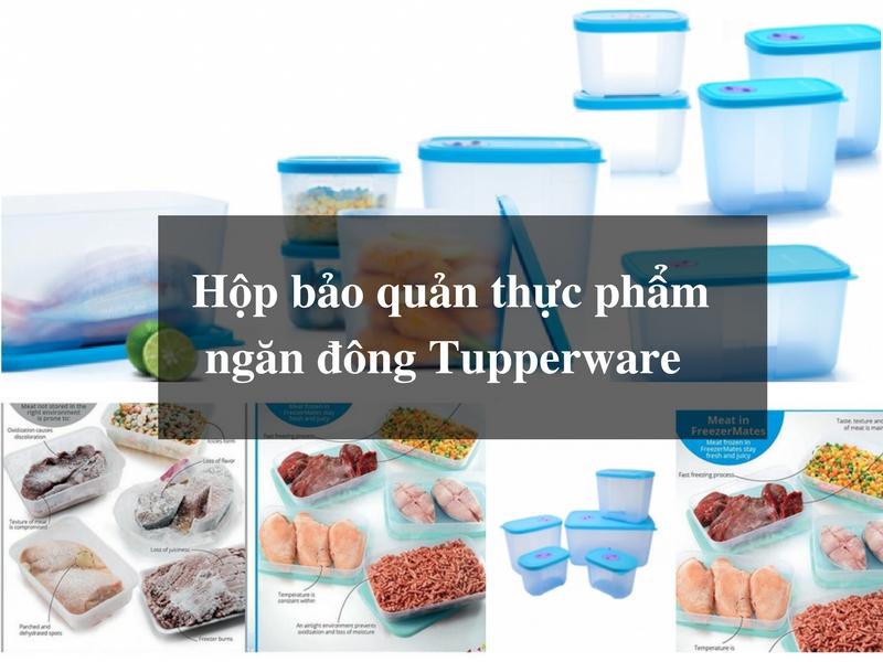 Hộp bảo quản thực phẩm ngăn đông Tupperware