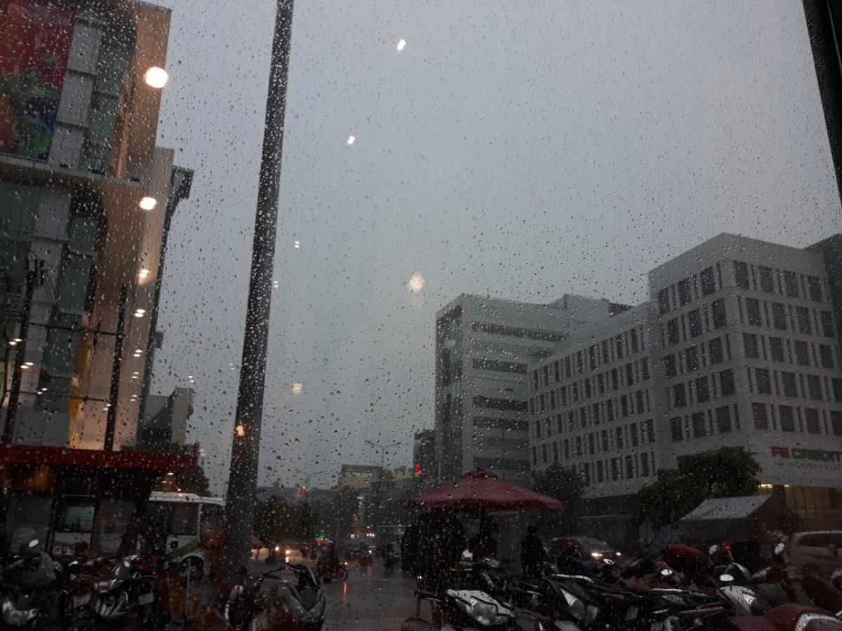 Môi trường ô nhiễm, khói bui, nắng mưa, thời tiết thay đổi thất thường.