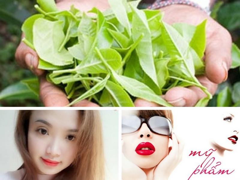 4 bước làm sữa rửa mặt dưỡng da từ lá trà xanh