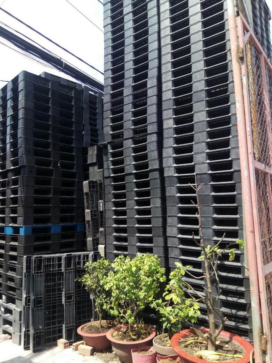 Tìm đại lý cung cấp pallet nhựa tại TPHCM